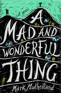 The Australian cover for Mark's debut book 'A Mad and Wonderful Thing'