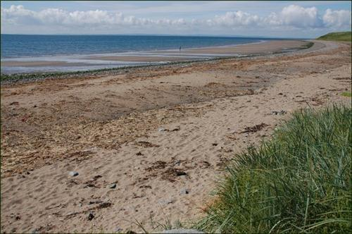 Access to Blackrock beach re-opens - Talk of the Town