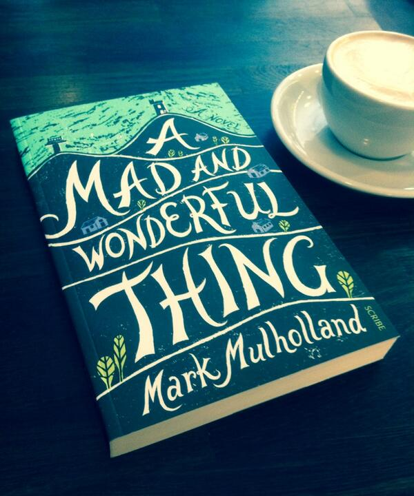 A Mad And Wonderful Thing's book cover